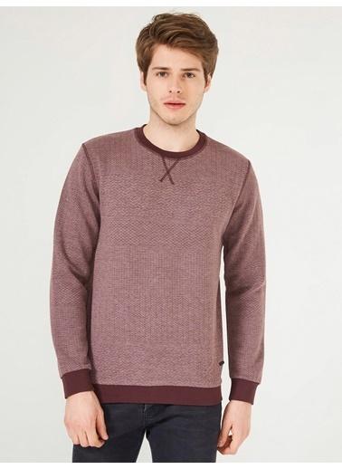 Sweatshirt-Xint